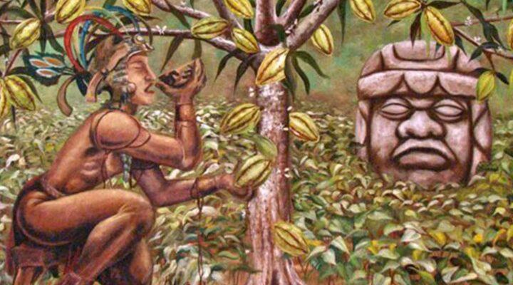 Lịch sử hình thành socola ngày nay mà bạn luôn yêu thích