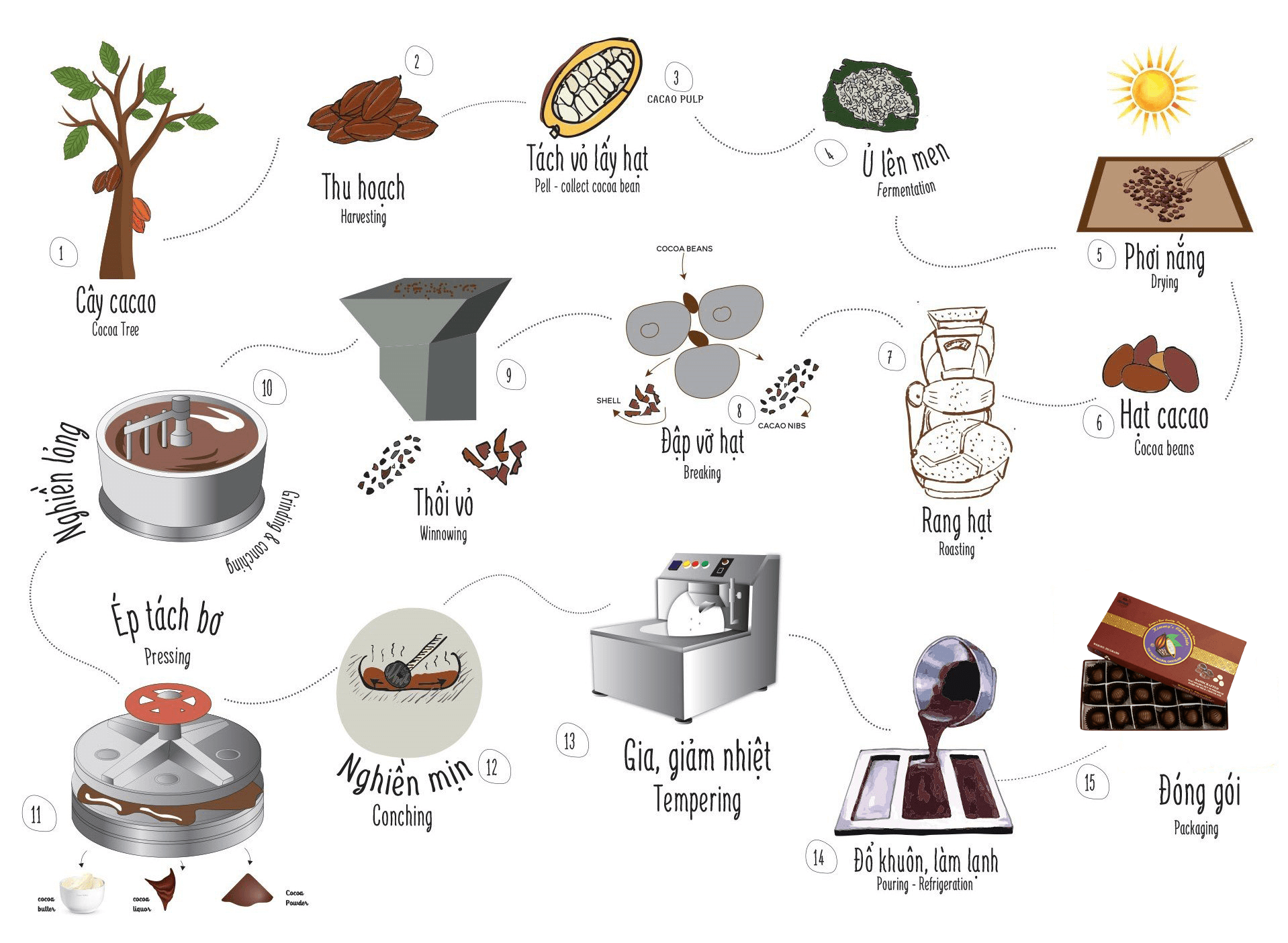 Quy trình sản xuất socola